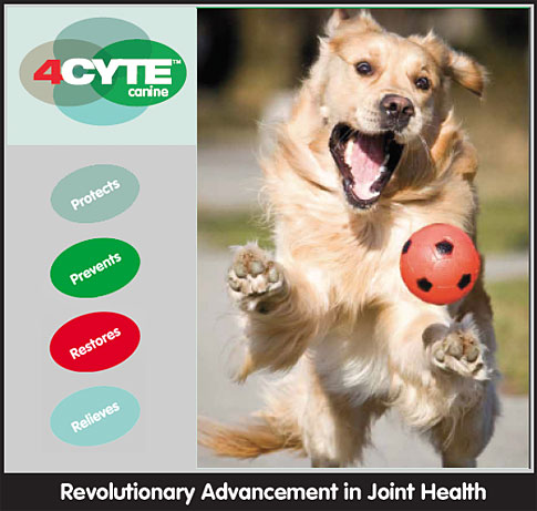 4Cyte Canine Dog Joint Supplement