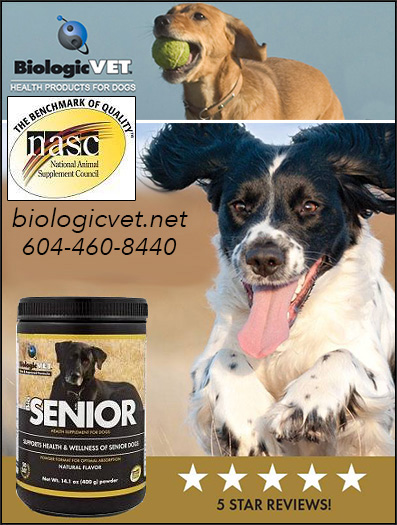 BioSenior Senior Dog Supplement