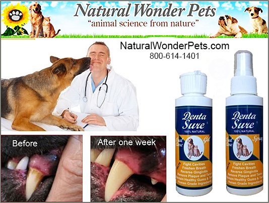 Natural Wonder Pets makes Denta Sure for Dogs!