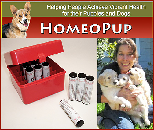HomeoPup Dog Homeopathic Kit