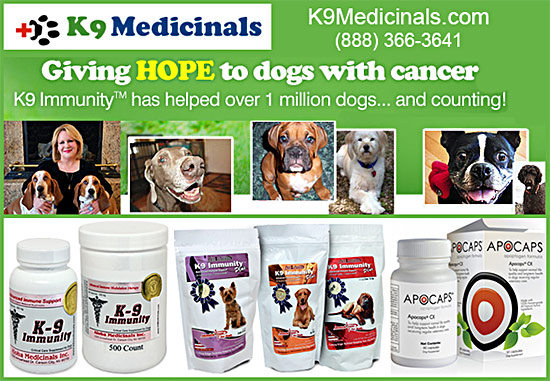 K9 Medicinals Giving Hope to dogs with Cancer!
