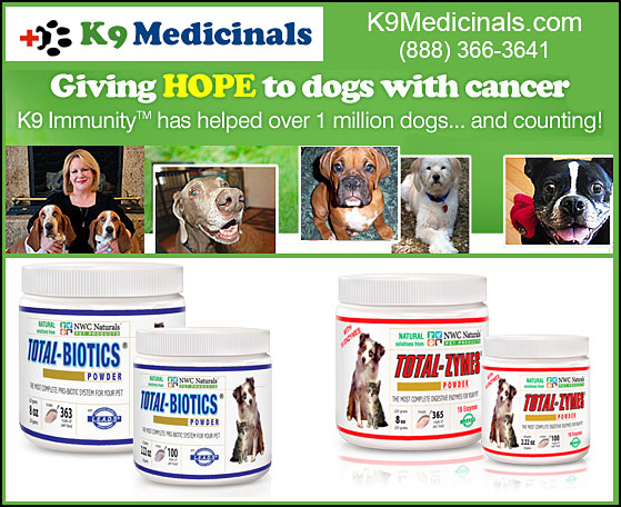 K9 Medicinals Digestive Supplements for Dogs
