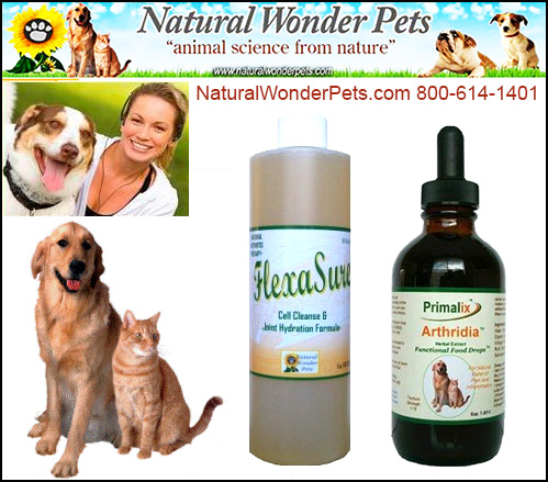 Joint Supplements by Natural Wonder Pets