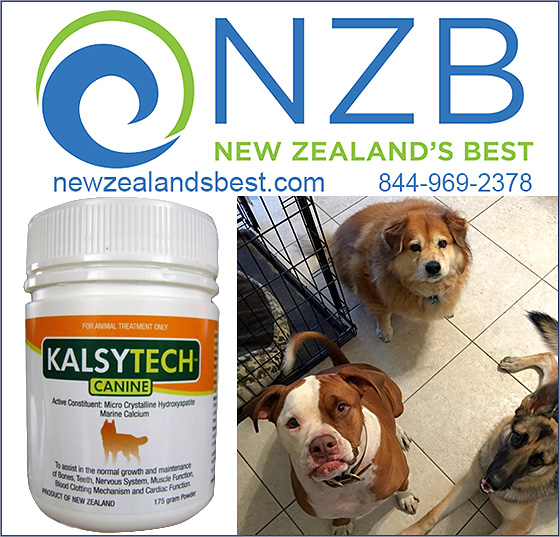 NZB Kalsytech Dog Joint and Calcium Dupplement