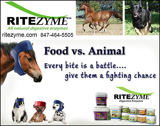 Ritezyme Digestive Enzymes for Dogs