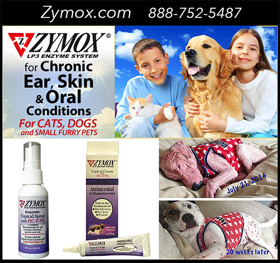 Zymox Spray and Cream for Dog Hot Spots