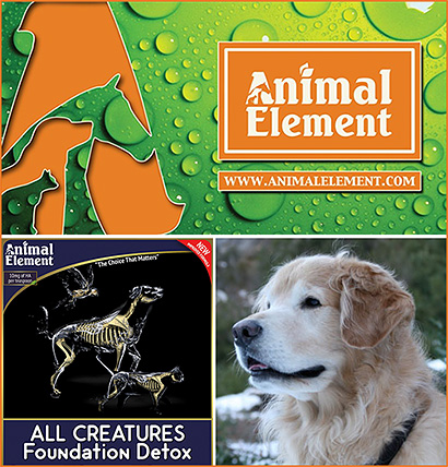 Animal Element Canine Health Supplements