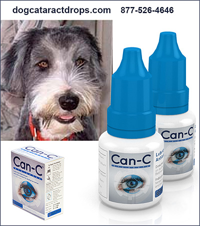 Can-C Eye Drops for Dogs