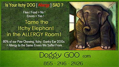 DoggyGoo Dog Allergy Supplement