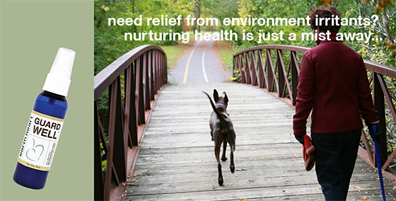 Essential Oils to relieve dogs from environmental irritants !