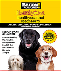 Healthy Coat Omega Supplements for Dogs