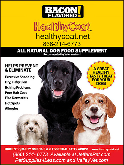 Healthy Coat Omega Dog Supplements