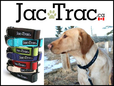 Jac Trac Dog Collars and Leashes