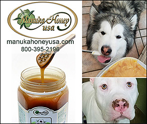 Manuka Honey USA Dog Health Product