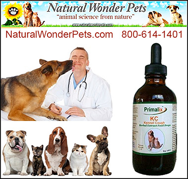 Natural Wonder Pets Kennel Cough Primalix KC