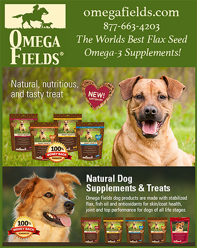 Omega Fields healthy Dog Treats