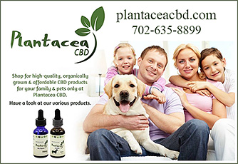 Plantacea CBD Hemp based dog supplements.