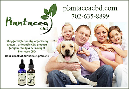 Plantacea CBD Anxiety Supplement for Dogs