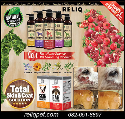 RELIQ Grooming Products for Dogs!