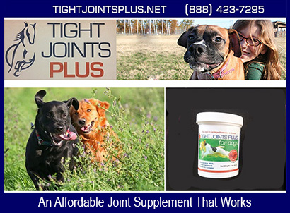 Tight Joints Plus Dog Supplement