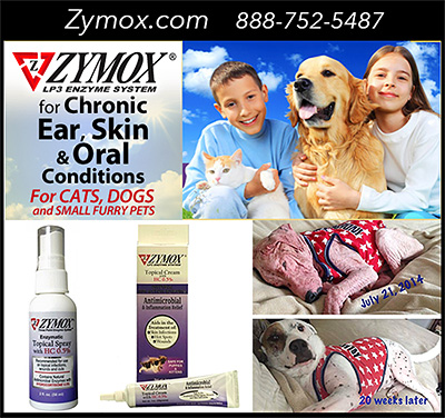 Zymox LP3 Enzyme System for Dogs